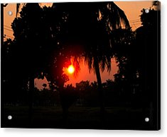 Sunset 4 Acrylic Print by Johnson Moya