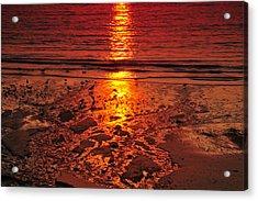 Sunset 4 Acrylic Print by Jenny Potter