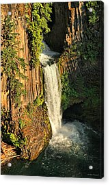 Sunset At Toketee Falls Acrylic Print by Winston Rockwell