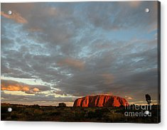 Sunset At Uluru Acrylic Print by Vivian Christopher