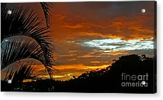 Sunset Behind The Palms Acrylic Print by Kaye Menner