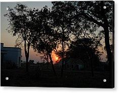 Sunset Behind Trees Acrylic Print by Johnson Moya