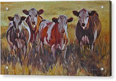 Sunset Cows Acrylic Print by Tahirih Goffic