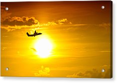 Sunset Flight Acrylic Print