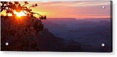 Sunset In Grand Canyon Acrylic Print by Olga Vlasenko