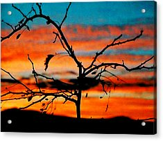 Sunset In Nevada Acrylic Print by Stephani JeauxDeVine