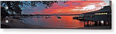 Sunset In Sydney Acrylic Print