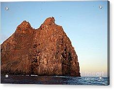 Sunset On Cliffs Of Wolf Island Acrylic Print by Sami Sarkis