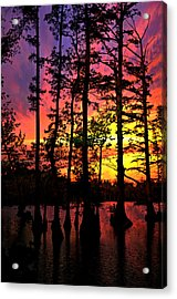 Sunset On Horseshoe Lake 1 Acrylic Print by Marty Koch