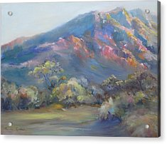 Acrylic Print featuring the painting Sunset On The Mountains by Bonnie Goedecke