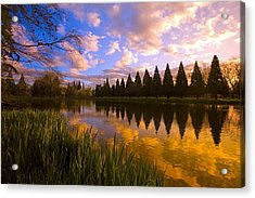 Sunset Reflection On A Pond, Portland Acrylic Print by Craig Tuttle