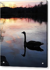 Sunset Serenity Acrylic Print by Shelley Patten-Forster