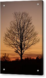 Acrylic Print featuring the photograph Sunset Silhouette by Cathy Shiflett