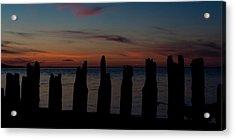 Sunset Silhouette Acrylic Print by Matt Dobson