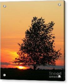 Sunset Square Acrylic Print by Angela Rath