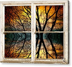 Sunset Tree Silhouette Abstract Picture Window View Acrylic Print by James BO  Insogna