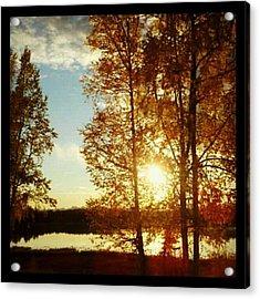 Sunset #trees #sunset Acrylic Print