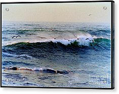 Acrylic Print featuring the photograph Sunset Watch  by Kathy Bassett