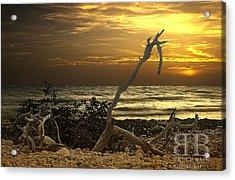 Sunset West II Acrylic Print by Bruce Bain