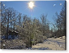 Sunshine In The Snow Acrylic Print by Nancy Rohrig