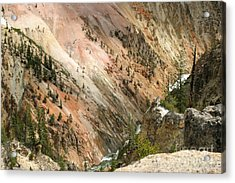 Acrylic Print featuring the photograph Sunshine On Grand Canyon In Yellowstone by Living Color Photography Lorraine Lynch