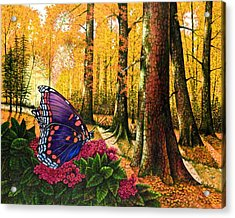 Sunshine Traveler-red Spotted Purple Acrylic Print by Michael Frank