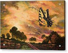 Sunshine Traveler-swallowtail Acrylic Print by Michael Frank