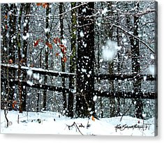 Supersized Snowflakes Acrylic Print by Ruth Bodycott
