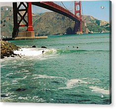Surfing The Golden Gate Acrylic Print by Rhonda Jackson