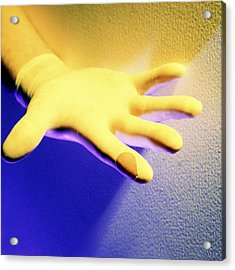 Surgical Glove Acrylic Print by Johnny Greig