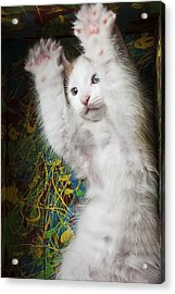 Surprise Acrylic Print by Garry Gay