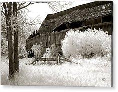 Surreal Infrared Sepia Michigan Barn Nature Scene Acrylic Print by Kathy Fornal