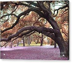 Surreal Old Oak Tree South Carolina Fall Colors Acrylic Print