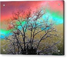 Surreal Winter Sky Acrylic Print by Will Borden