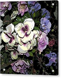 Surrounding Pansies Acrylic Print by Pamela Hyde Wilson