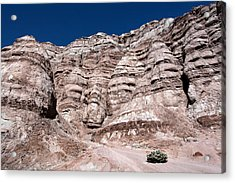 Acrylic Print featuring the photograph Survival In The Wilderness by Karen Lee Ensley