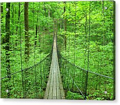 Suspension Bridge Acrylic Print by Daniel Muller