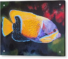 Sutton Fish Acrylic Print by Terry Gill