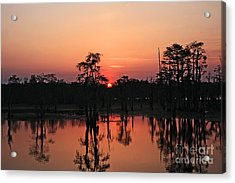 Acrylic Print featuring the photograph Swamp Sunset by Luana K Perez