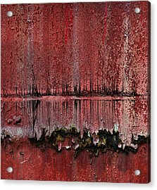 Swamp With Sin Acrylic Print by Jerry Cordeiro