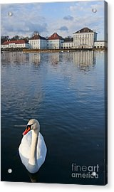 Swan At The Palace Acrylic Print by Andrew  Michael