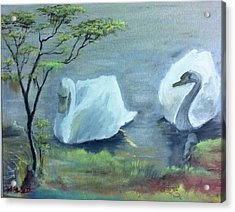 Swan Couple Acrylic Print by M Bhatt