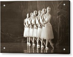 Swans Lined Up Acrylic Print by Kenneth Mucke