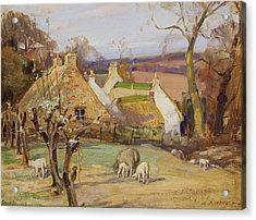 Swanston Farm Acrylic Print by Robert Hope