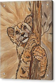 Sweet Baby Acrylic Print by Connie Valasco