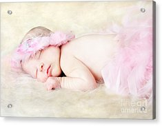Sweet Baby Girl Acrylic Print by Darren Fisher