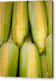 Sweet Corn Acrylic Print by Jen Morrison
