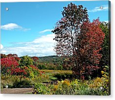 Acrylic Print featuring the photograph Sweet Scent Of Autumn by Christian Mattison