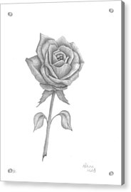 Acrylic Print featuring the drawing Symbol Of Love by Patricia Hiltz