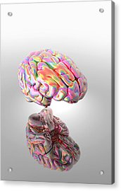 Synaesthesia, Conceptual Artwork Acrylic Print by Victor Habbick Visions
